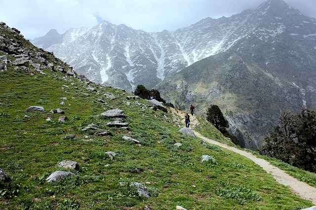Triund - Top Trekking Places in North India By The Royal Escape