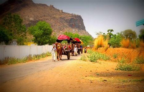 Guided Trek to Geejgarh Fort (Custom)