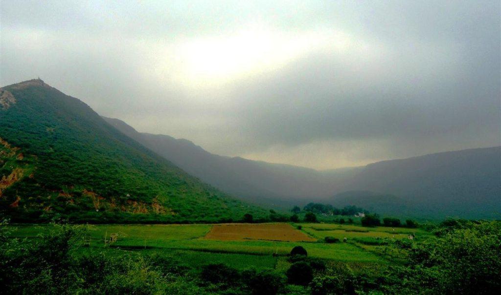 Sariska-Tiger-Reserve-Sariska-Wildlife-Sanctuary-Monsson-Aravali-Hills-Alwar-Rajasthan (Custom)